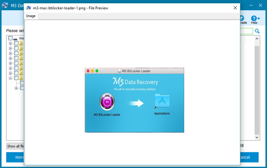 File preview of M3 Data Recovery